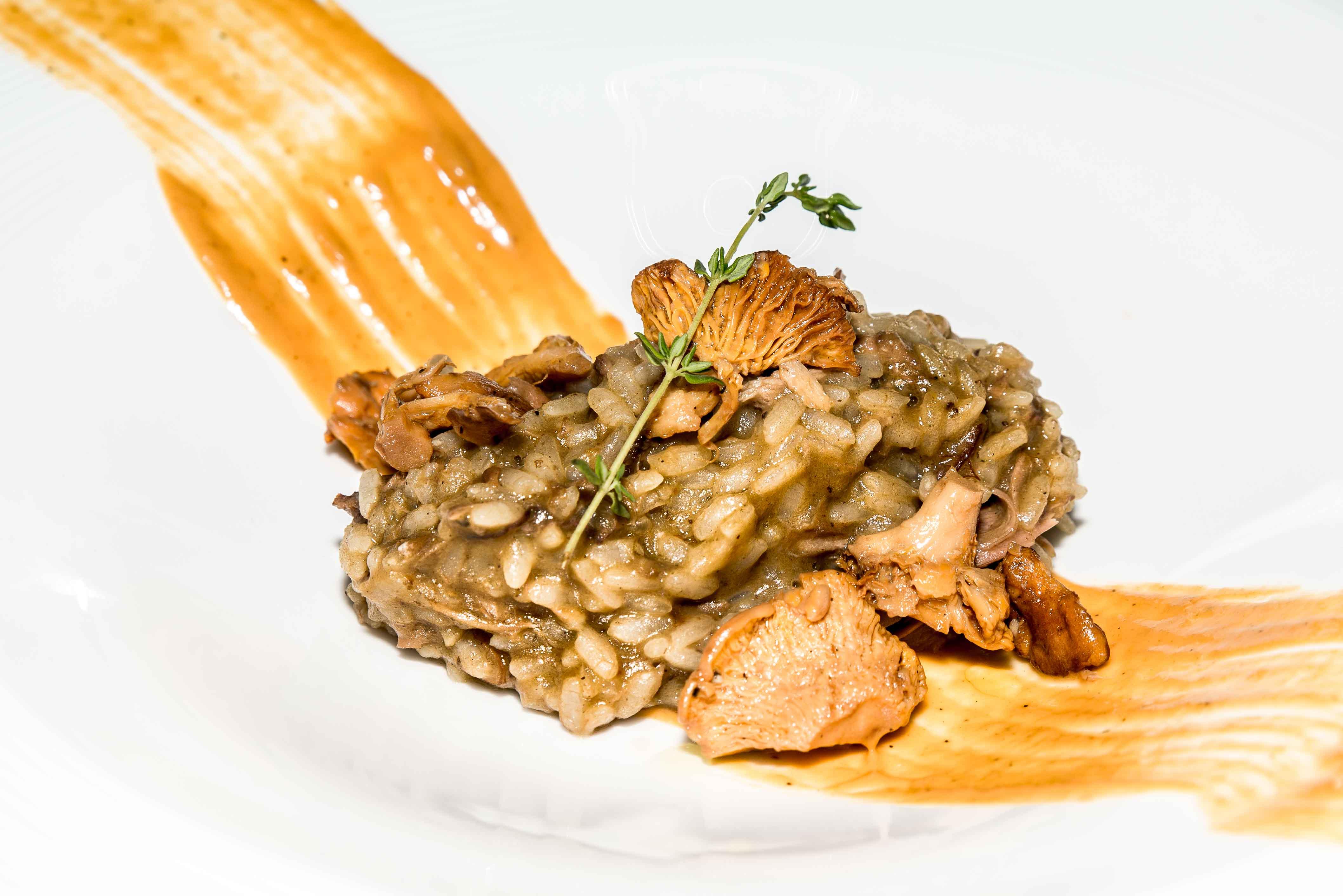 arroz-de-conejo-de-monte-setas-y-pimiento-de-torquemada